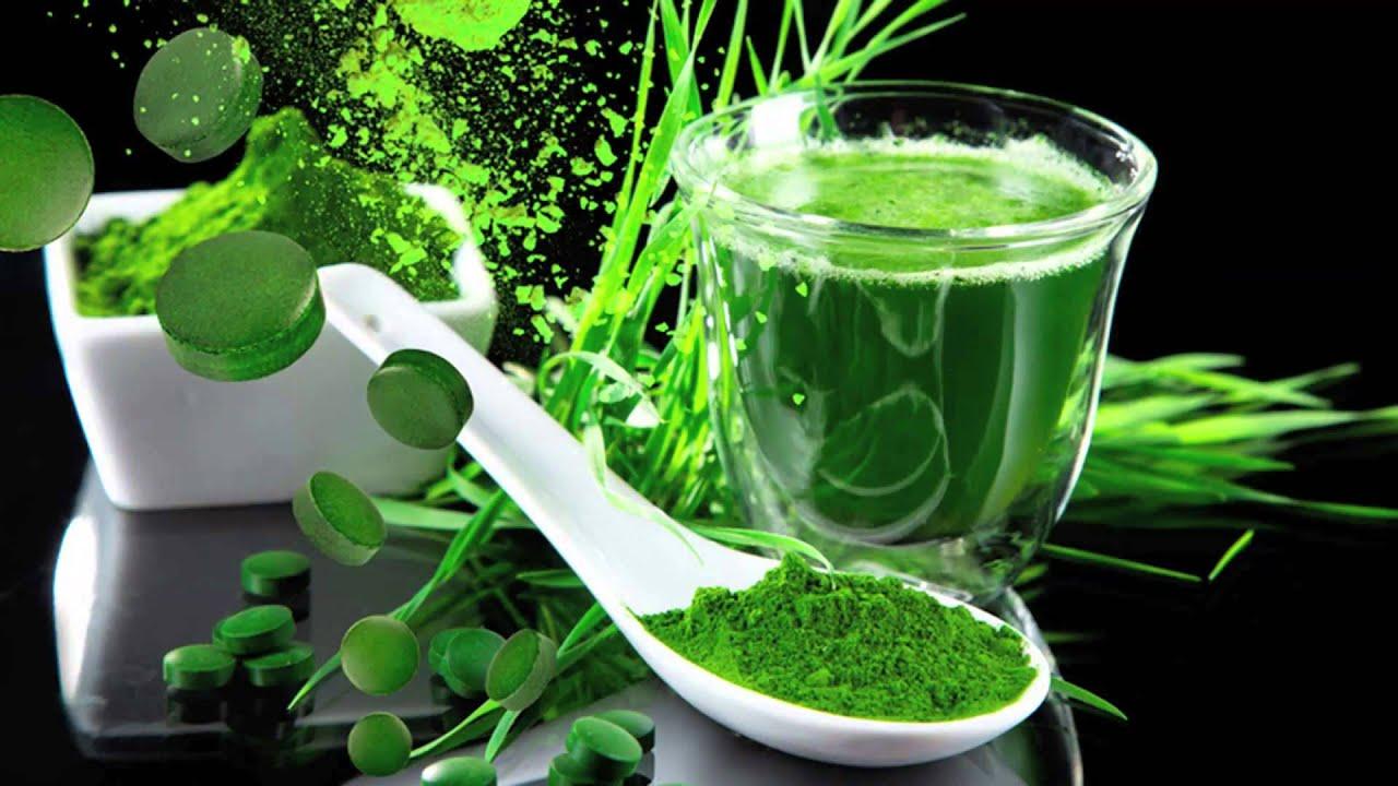 Хлорофилл — очищение и омоложение организма.